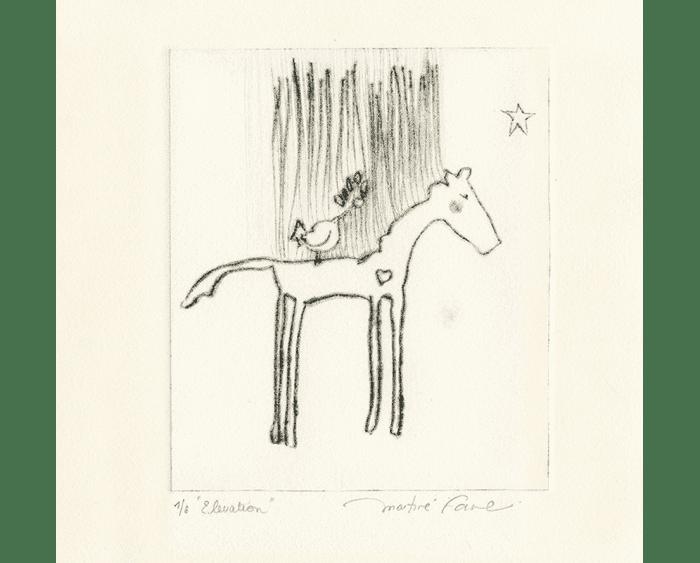martine-favre-artiste-gravure-croquis-carte-souhaits-poney-elevation