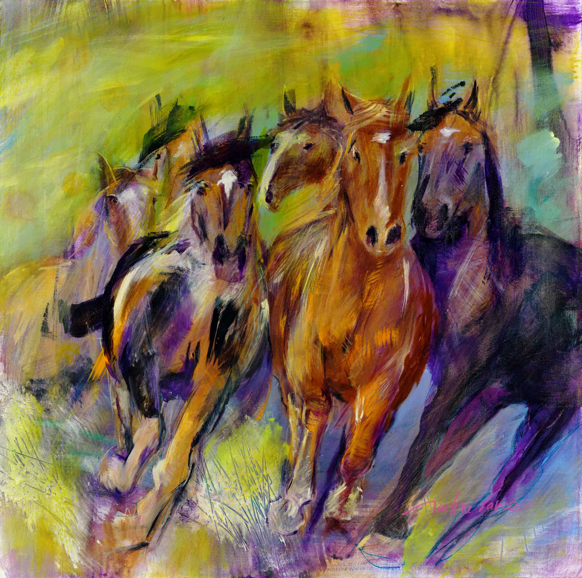 chevaux, galop, sauvage, cheval, martine favre,